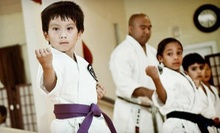 $29 for One Month of Unlimited Martial-Arts Classes with Uniform at Shotokai-USA in Bayside ($185 Value)
