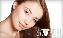 $96 for Three 30-Minute Massages, Fast Facials, or Pedicures at Spa Sydell ($150 Value)