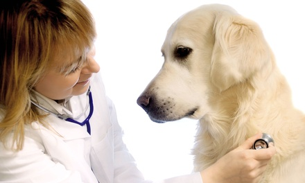 One Annual Wellness Exam with Vaccines for a Dog or Cat at Hog Mountain Animal Hospital (Up to 51% Off)