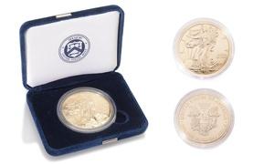 2015 Gold Enhanced Silver American Eagle Brilliant Uncirculated Coin