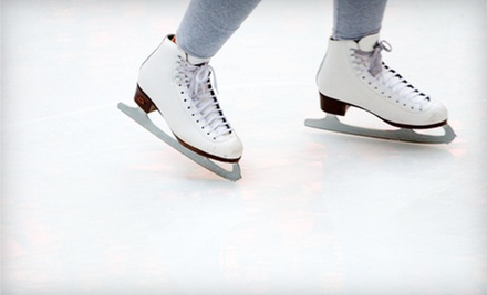 Ice Skating for Two or Four or Skating Lessons at Blazers Ice Centre (Up to 53% Off)