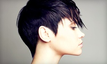 Cut and Style with a Deep-Conditioning Treatment, All-Over Color, or Partial Highlights at Trends Salon (Up to 57% Off)