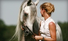 $30 for Two Private Horseback-Riding Lessons at St. Croix Training Center in Hudson ($60 Value)