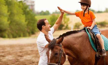 One, Three, or Five Semiprivate Horseback-Riding Lessons at Dakota Stables (Up to 54% Off)