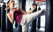 10 or 20 Cardio-Kickboxing or Cage-Fighting Fitness Classes at Chi's Martial Arts Training Center (Up to 87% Off)