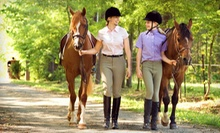 One, Three, or Five 60-Minute Horseback-Riding Lessons at Sonora Creek (Up to 61% Off)