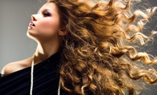 Haircut, Blow-Dry, and Style with Optional Partial or Full Highlights at XEX Hair Gallery (Up to 52% Off)