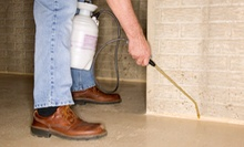 Indoor and Outdoor Treatments from Horizons Professional Pest Control (Up to 80% Off). Four Options Available.
