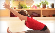 5, 10, or 20 Yoga or NIA Classes at Baltimore Yoga Village (Up to 78% Off)