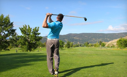 Four Weekly 90-Minute Golf Lessons on a Weeknight or Weekend at Mt. Freedom Golf (Up to 56% Off). Six Options Available.