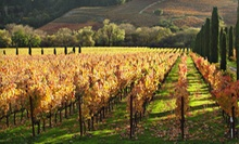 SonomaNapa Valley Wine-Tasting Tour for One or Two with Terrific Tours (Up to 54% Off)
