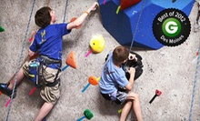 $89 for a Three-Day Summer Camp at Climb Iowa (Up to $200 Value). Nine Sessions Available.
