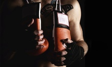 10 or 20 Fitness Classes at Top Notch Fitness &amp; Boxing (Up to 88% Off)