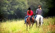 One Day or One Week of Horseback-Riding Camp at Stono River Riding Academy (Up to 55% Off)