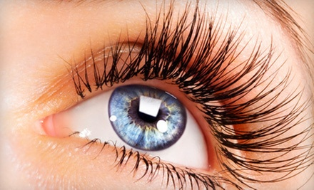 Eyelash Extensions with Optional Fill Treatment at Lashes to Waxes (Up to 60% Off)