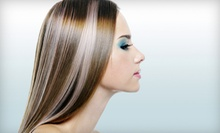 Haircut Package with Options for Highlights or Color at The Hair Connection (Up to 55% Off). Three Options Available.