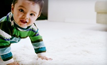 Carpet Cleaning for Up to 1,200 or 2,500 Square Feet from Steam Solutions (Up to 60% Off)
