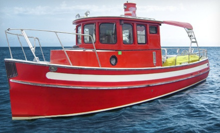 $249 for a Four-Hour Private Fishing Excursion for Up to Four from Red Bull Charters ($550 Value)