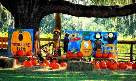 Corn Maze Festival for Two or Four at Timberline Farm (Up to 47% Off)