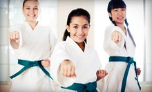 10 or 20 Classes at First Strike Brazilian Jiu-Jitsu Academy (Up to 88% Off)