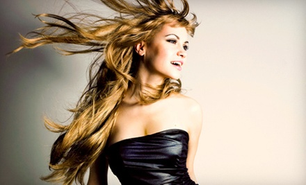 Hairstyling Packages at Style Envy Hair &amp; Tanning Salon (Up to 55% Off). Three Options Available.
