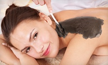 $79 for One Mud Treatment with 30-Minute Massage at Blue Waters Holistic Center ($175 Value)