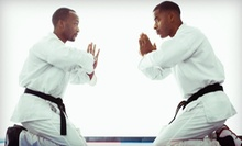 4 or 10 Brazilian Jujitsu or Muay Thai Classes with Equipment at Queens Mixed Martial Arts (Up to 89% Off)