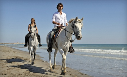 One-Hour Trail Ride or Two-Hour Beach Ride for One or Two at HorseSpa (Up to 59% Off)