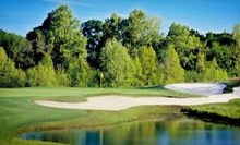 $89 for a Round of Golf and Champion Pro-Series Hybrid Golf Club at Meadowbrook Farms Golf Club in Katy 