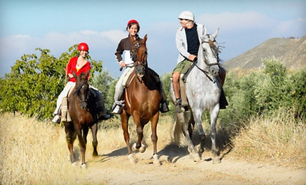 $59 for a Three-Hour Trail Ride with Brisket or Baby-Back-Ribs Dinner from Sleepy Sheep Ranch ($170 Value)