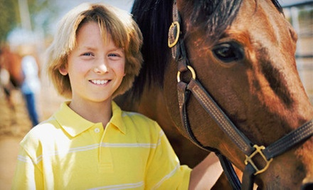 One or Three Private 30-Minute Horseback-Riding Lessons at Woodwind Farm (Up to 53% Off)