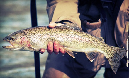 Trout Fishing Including Rod Rental and Fish for Two, Four, or Six People at Burds Family Fishing (Up to 53% Off)