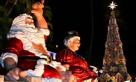 Holiday-Lights Tour for One Child or Adult from Polynesian Adventure Tours (Up to 53% Off)