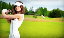 One or Three 60-Minute Private Golf Lessons with Swing Analysis and Digital Recording at GolfSmarts (Up to 73% Off)