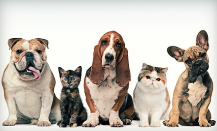 $7 for $15 Worth of Pet Supplies at Jim Thorpe Pet Center