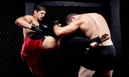 One Ticket or a VIP Table for Six at The Cage Man Kickboxing Challenge or UrFight 2 MMA Events (Up to 56% Off)