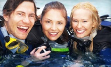 Two-Hour Discover Scuba Diving Course for One, Two, or Four at Deep Blue Scuba & Swim Center (Up to 53% Off)