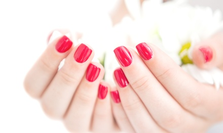 Shellac Manicure with Pedicure or Spa Mani-Pedi, Facial, or Both at FrancesRay Jules Salon (Up to 47% Off)
