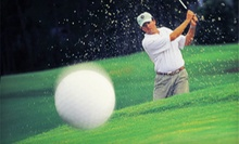 Unlimited Golf Lessons Membership for 90 Days for One or Two at Bobby Lopez Quick Fix Golf (Up to 65% Off)