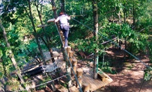 Three-Hour Aerial Obstacle-Course Session for One at The Adventure Park at Sandy River Retreat (Half Off)