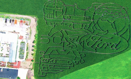 $22 for Fall-Festival Corn Maze and Activities for Four at 101 Market ($44 Value)