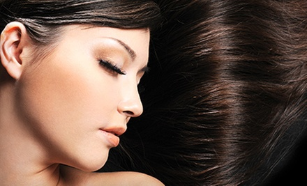 Haircut and Conditioning with Optional Color Packages from Michele Nutty at D'Arte Salon & Spa (Up to 62% Off)