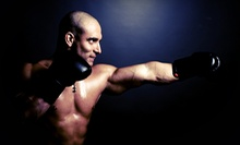 8 or 16 Group Martial-Arts Classes with One Private Lesson at Storm MMA (Up to 85% Off)