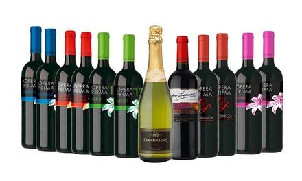 12 garrafas de vinho espanhol Gourmet Selection desde 49,99€
