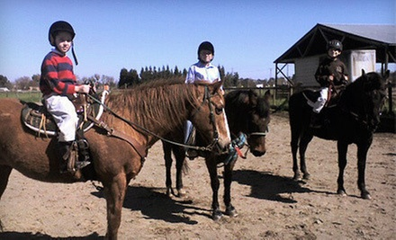 Three 90-Minute Introductory Horseback-Riding Lessons or $199 for $400 Worth of Lessons or Summer Camp at Epona Farms 