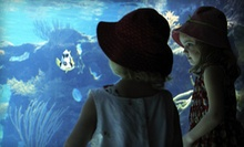 $9 for a Visit for Two at Idaho Public Aquarium (Up to $18 Value)