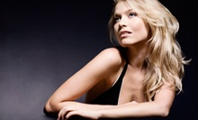 Cut and Style Package with Single-Process Touch-Up or Partial or Full Highlights at Domane Hair Salon (Up to 61% Off)