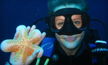Two-Hour Discover Scuba Class for One or Two at UBC Aqua Society (Half Off)