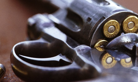 $59 for a Concealed Handgun License Class at Dixon Firearms Training ($100 Value)