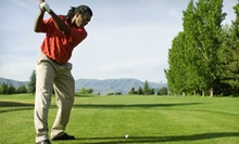 Two or Four Private Golf Lessons with Video Swing Analysis at Sweet Swing Golf (Up to 80% Off)